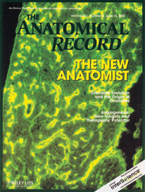 The Anatomical Record The New Anatomist